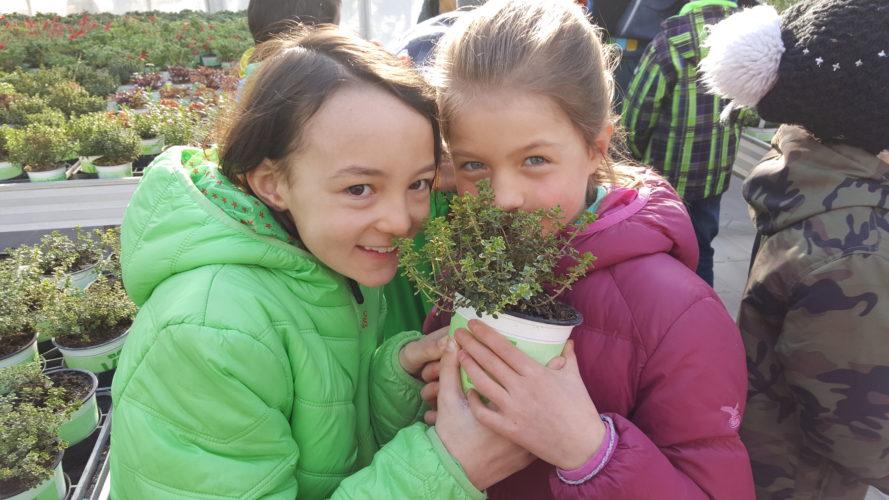 Schülertag in der Gärtnerei