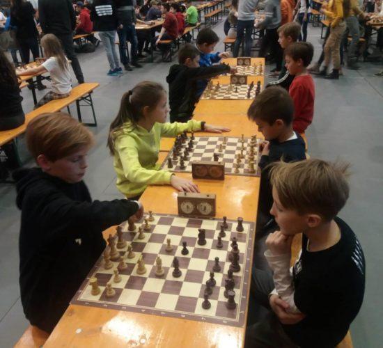 Schulschach-Landesmeisterschaft
