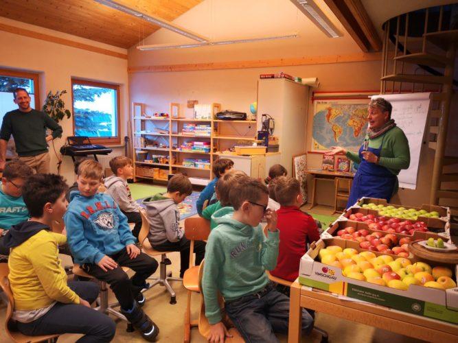 Apfel Schulprojekt (IDM)